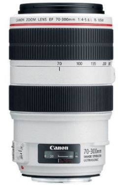 0068290003 - CANON EF 70-300/4-5.6 L IS USM (AIP)