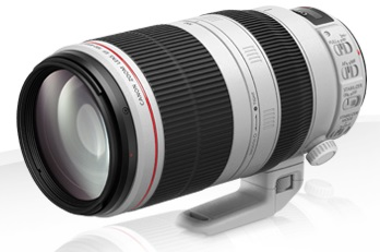 0068296299 - CANON EF 100-400mm f/4.5-5.6L IS II USM (AIP)